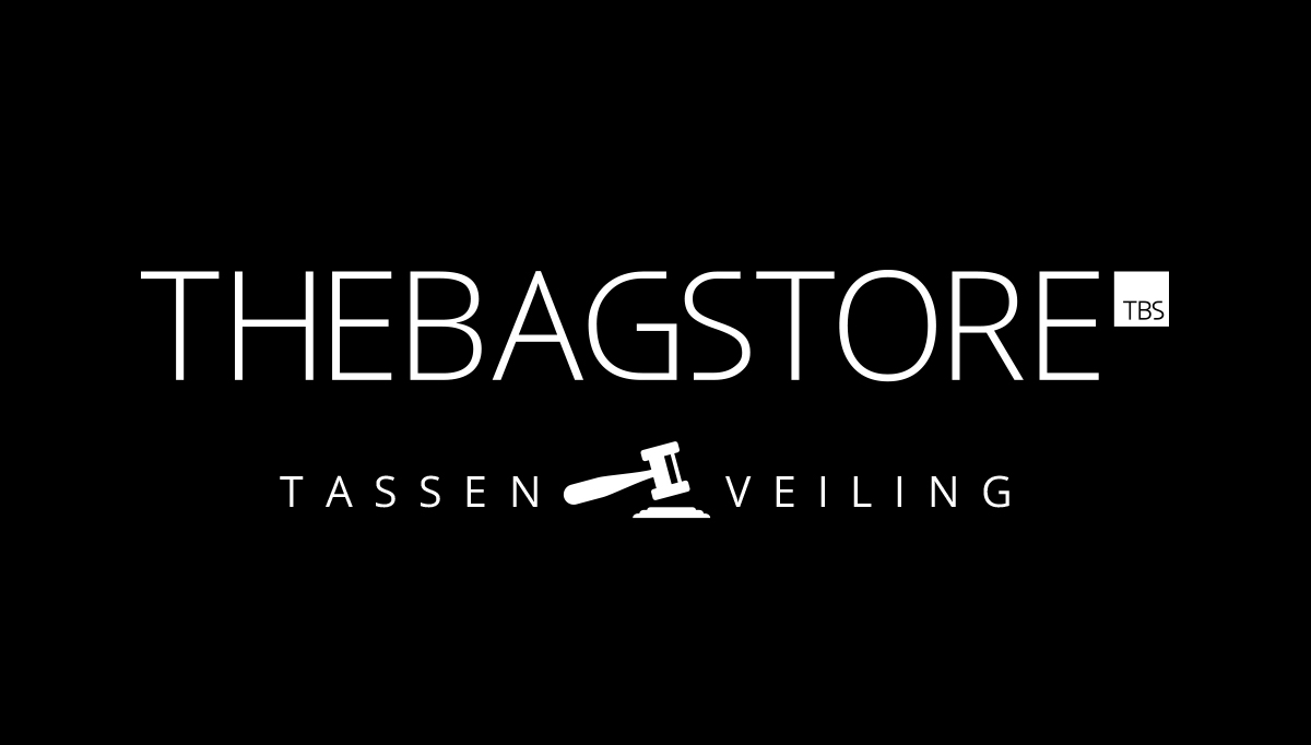 Tassen webshop TheBagstore.nl veilt tassen voor Elfstedenzwemtocht Maarten van der Weijden